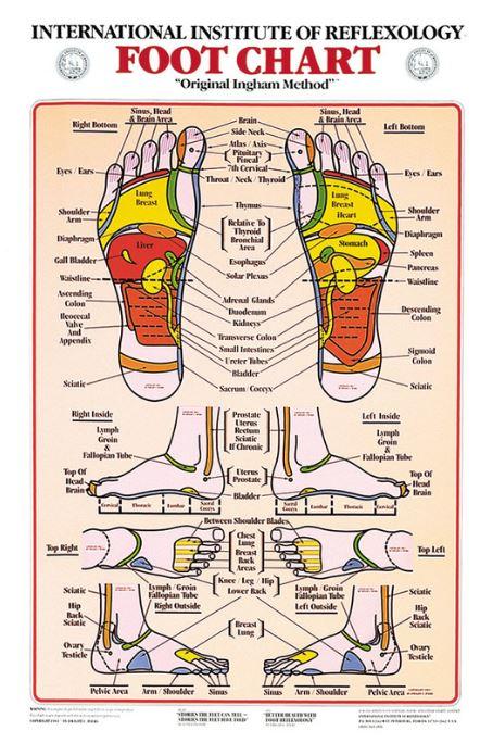Planche réflexologie